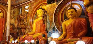 Из Иркутска в Шри-Ланку: Коломбо