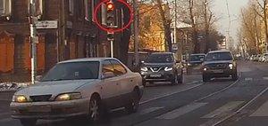 Автохам: стадный рефлекс и собаки-пешеходы