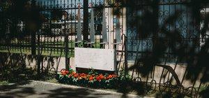 Аллея памяти: «За тыщи верст разбросаны могилы тех, кто сажали эти тополя»