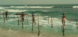 Шри-Ланка: взгляд изнутри