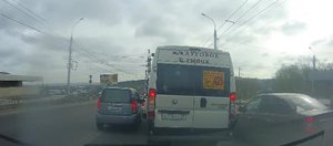 Автохам: эпопея с маршруткой и кот-пассажир