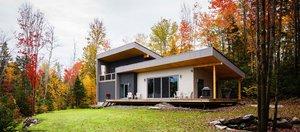 Дом в стиле Райта и очаровательные белочки
