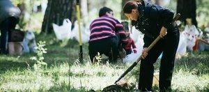 От уборки до форумов: чем запомнился Год экологии в Иркутской области