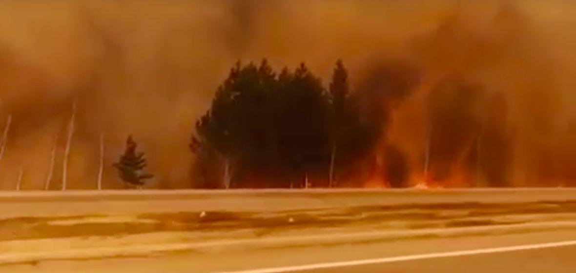 Трасса «Сибирь».Скриншот из видео