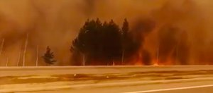 Лесные пожары в Иркутской области: место, площадь и фотографии