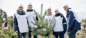 РУСАЛ восстанавливает леса Сибири: 500 тысяч деревьев высажено в Иркутской области