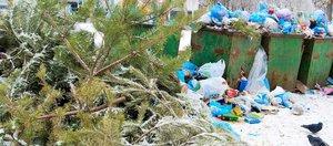 Мусор после нового года. Куда сдать и как избежать отходов в будущем