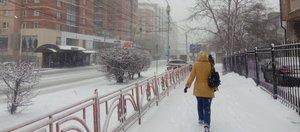 Снег и метель: текстовая трансляция