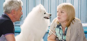 Выставка собак в Иркутске
