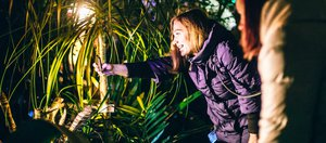 Экскурсия с фонариками по Ботаническому саду
