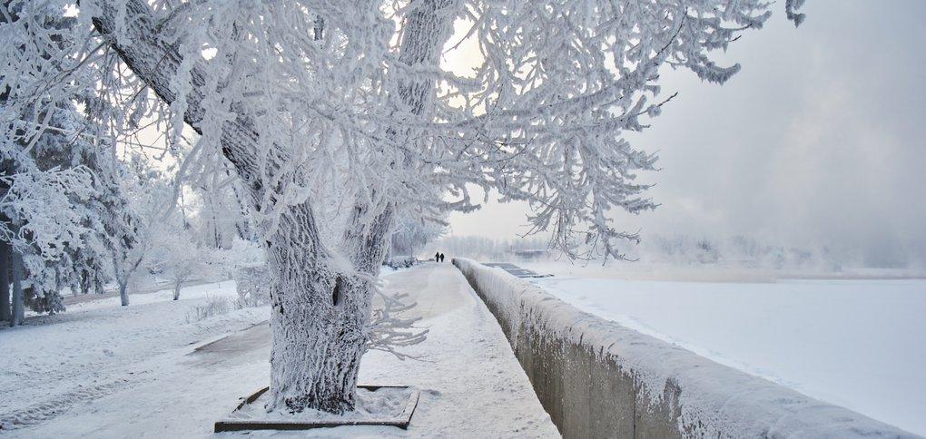 Зимой река парит, создавая на набережной атмосферу сказки.