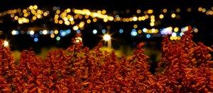 Прогулка по ночному Иркутску