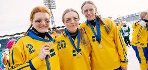 Финал первенства мира по хоккею с мячом среди девушек