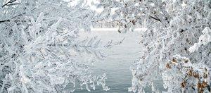 Зимняя сказка в Иркутске