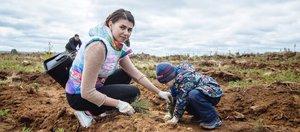 Всероссийский день посадки леса в Иркутском районе