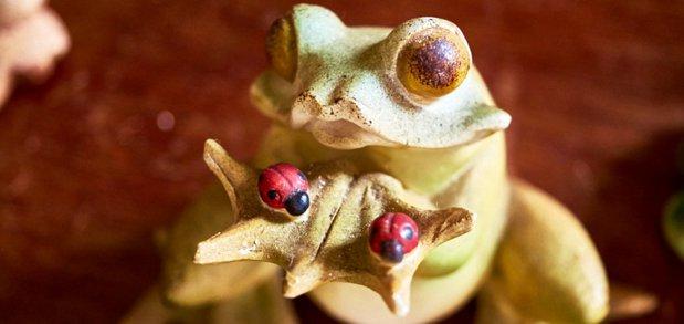 Елена Суханова считает лягушек символом благополучия.