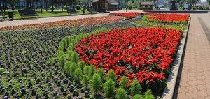 Цветущий Иркутск