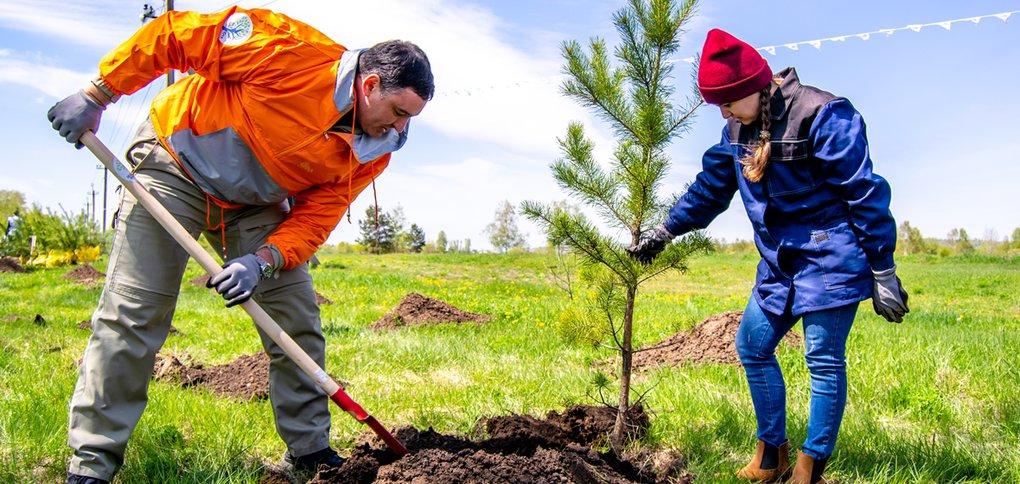 Акция по посадке деревьев прошла в микрорайоне Боково.