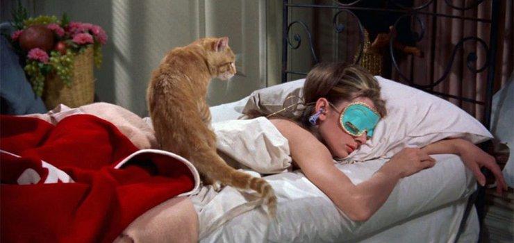 Внимательно ли ты смотрел «сонные» фильмы?
