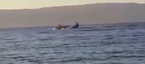 Видео падения легкомоторного самолета на Ольхоне